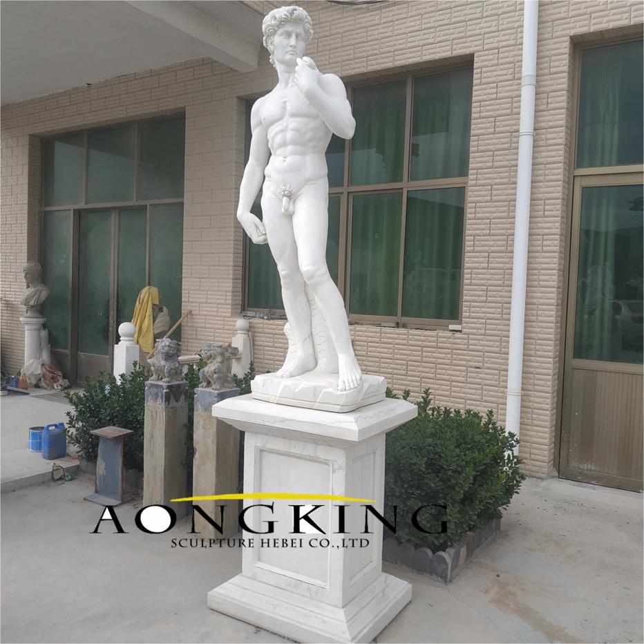 Classical david statue