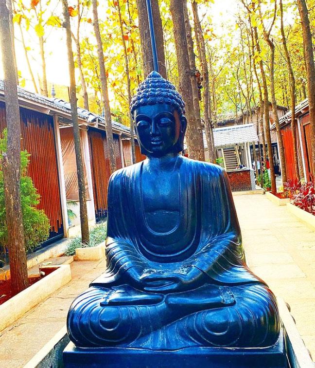 blue marble buddha