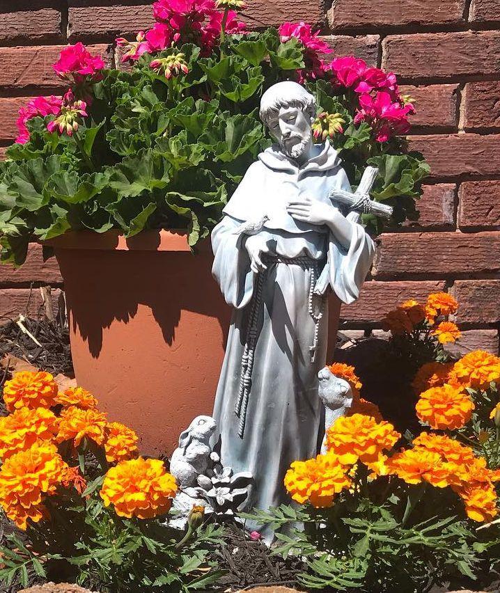 stone st francis statue